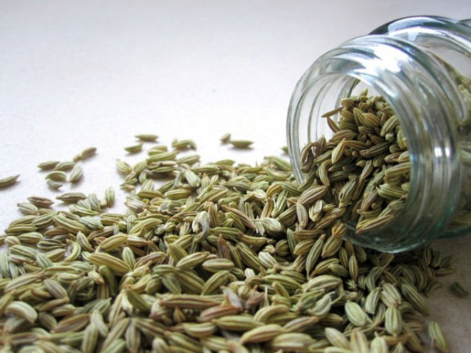 fennel fennel seeds