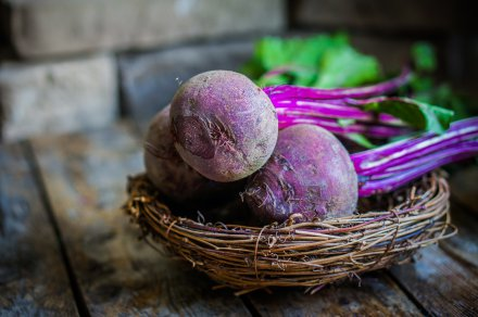 How to prepare beet starter